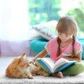 猫と人の子供が仲良くなるためにできる3つの方法