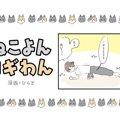 ねこよんコギわん【第28話】「筋トレ②」