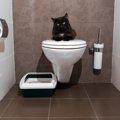 猫トイレの最適な場所とは?設置する時のポイント
