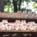 豪徳寺の招き猫の値段や大きさ、購入方法