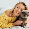 猫が『キレてしまう』こと5つ!本気で怒ると手がつけられなくなるこ…