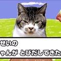 「やせいのねこがあらわれた!」猫と一緒に茶番劇♪リキモンGETだぜ!
