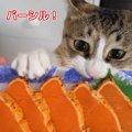 初めてのシルバーサーモン!猫ちゃん達の反応は?