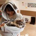 猫用ポケットの付いた服「ニャンガルパーカー」について