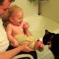 くすぐったいけどクセになる!?赤ちゃんをペロペロする猫ちゃん