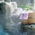 猫と温泉を楽しむ方法とその際の注意点