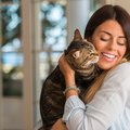 猫と『ラブラブな関係』になる4つの秘訣
