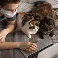 猫が『飼い主の隣に座る』5つの理由!距離でわかる好感度とは?