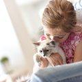 猫パスツレラ菌感染症の症状と予防法