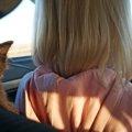 猫とドライブをする時の注意点やストレス解消法、おすすめグッズまで