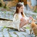 猫と仲良くなる方法7つと注意点