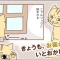 きょうも、お猫さまはいとをかし。【第12話】「温室育ち」