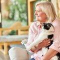 猫の飼い主がやりがちな『NG行為』5選!暮らしに慣れて勘違いしてい…