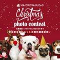 12/25締切!ペットの写真で豪華なクリスマスプレゼントをGETしよう