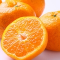 猫にみかんは与えても大丈夫?柑橘系を嫌う理由について
