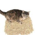 猫砂が飛び散らないようにする5つの対策