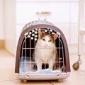 猫を病院へ連れていくコツ!猫用キャリーの選び方や工夫について