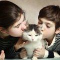 猫の匂いを嗅いだコトありますか?独特の良い匂いの秘密とは