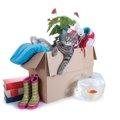 猫と引っ越しする時は?猫に与える影響や注意点をチェックしましょう!