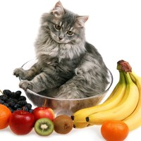 食べてはいけないもの(果物)