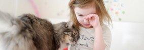 猫は人間の言葉をどこまで理解している?