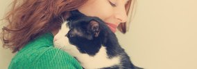 猫の寿命を短くする4つの飼い方