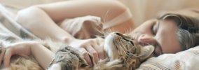 猫が「好きな人」にしかしない16の行動