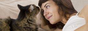 猫が飼い主と一緒に寝る7つの理由とは?心理や眠るときの注意点
