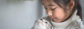 猫は家族に優劣をつける?尊敬している人にする行動とは?