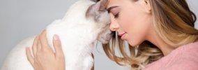 猫が喜ぶ『スキンシップ』6つ