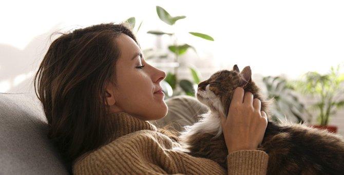 猫は飼い主がずっと家にいたら『ウザい』と感じる?