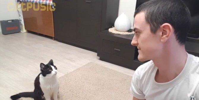 目が合うとお返事!飼い主さんと会話がしたい猫ちゃん