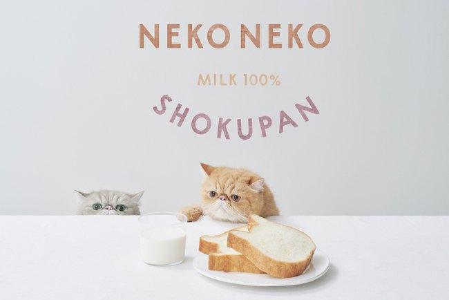 【東京に初登場!】激カワ♡ねこの形の高級食パン