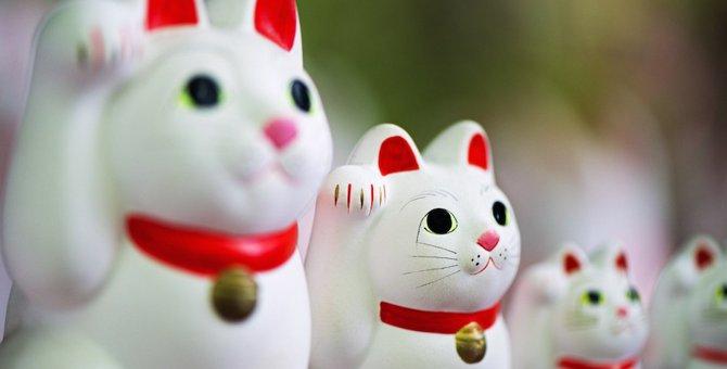 招き猫がいるお寺5選!所縁やアクセス方法
