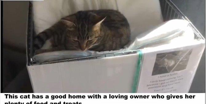 愛猫が、近くの店に通い続けている理由は驚くべきものだった!