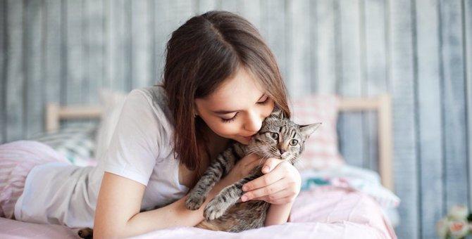 猫に対して過保護になっているかもしれない4つの飼い方