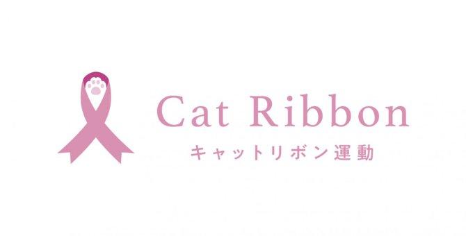 乳がんで苦しむ猫をゼロにする『キャットリボン運動』って知ってる?