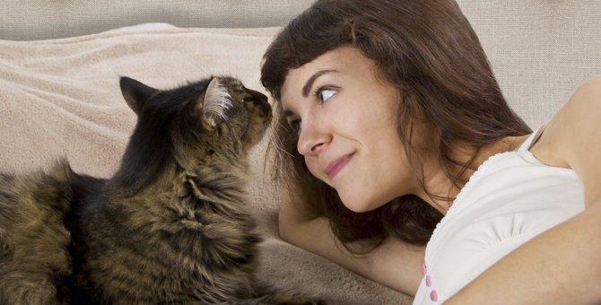 腕枕で猫が一緒に寝たがる4つの理由