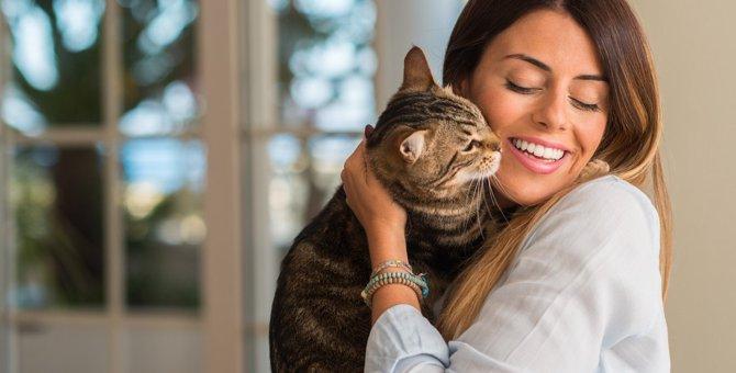 甘えん坊な猫をダメにする『飼い主のNG対応』4選