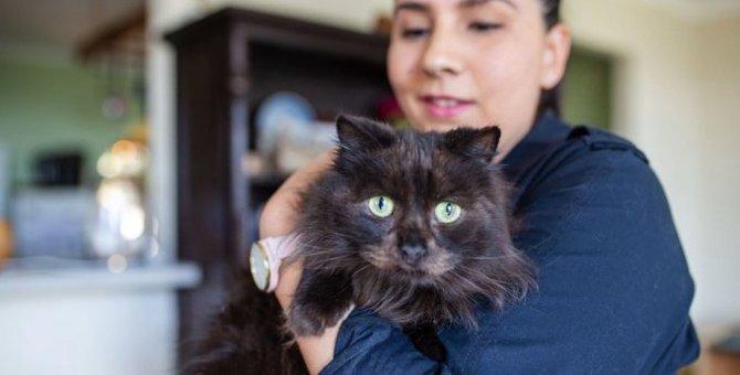 ひどい皮膚炎を放置された猫…保護され安堵の姿に涙