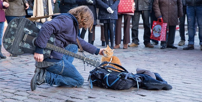 映画「ボブという名の猫 幸せのハイタッチ」のあらずじと見所