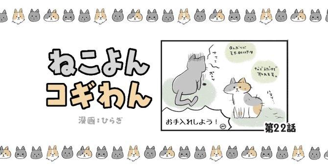 ねこよんコギわん【第22話】「シャンプータオル」