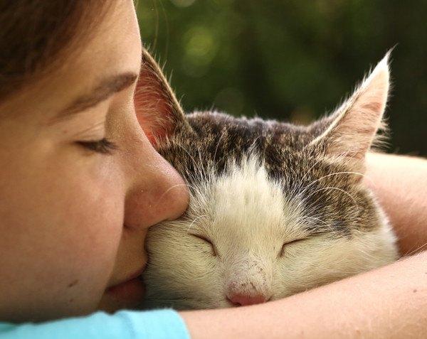 『猫に振り回される幸せ』飼い主あるある8つ