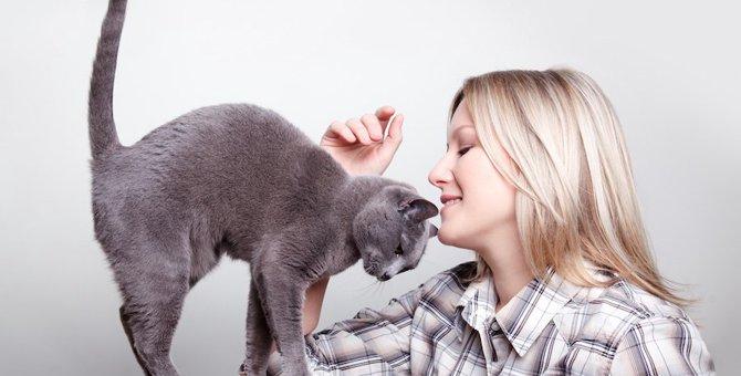 猫も人によって態度が違う?叱られるときと褒められるときの表情の違い