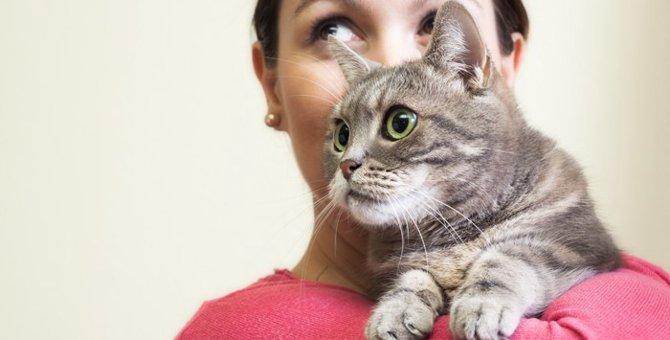 猫は名前を覚える?認識させる方法やお返事の仕草