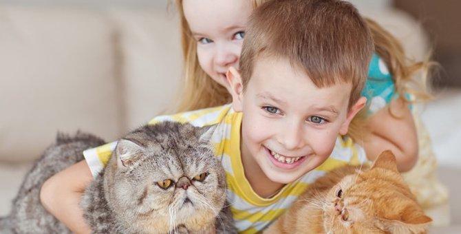 猫が子どもに与える力とは?