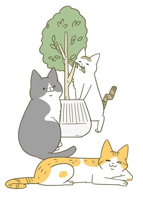 話題の猫の漫画『うちの猫がまた変なことしてる。』をご紹介!著者の『卵山 玉子』さんへインタビュー