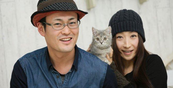 猫の譲渡会についてと面接の内容とは