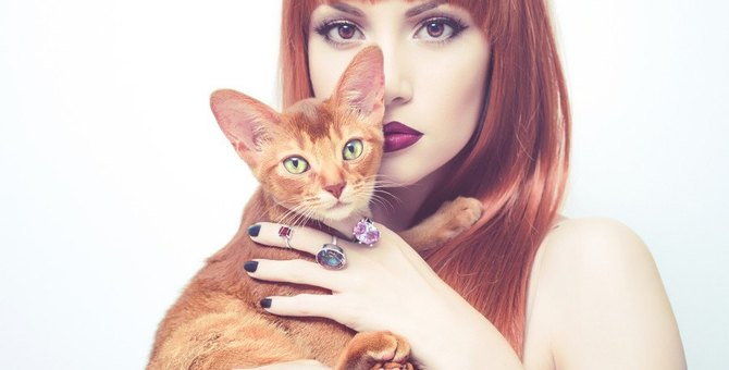 ハイブランドの猫アイテムが人気!バッグや財布などを紹介