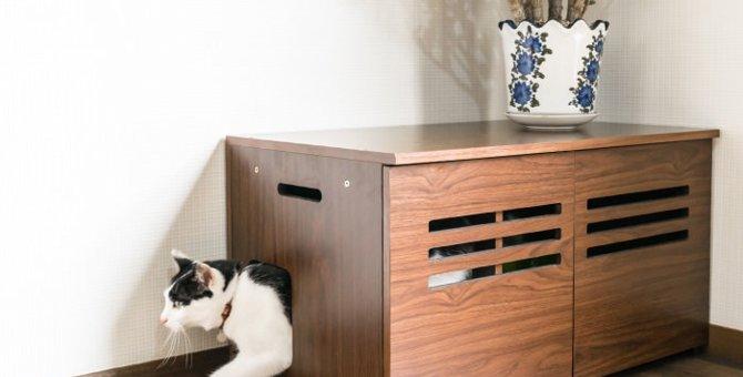 猫トイレをおしゃれに見せる方法とおすすめ商品